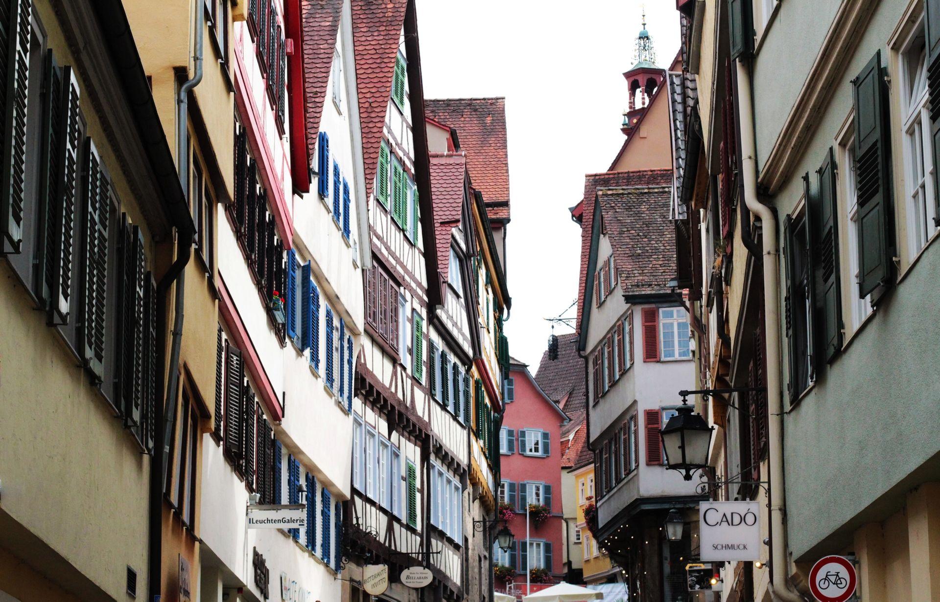 Anticimex Kammerjäger in Tübingen