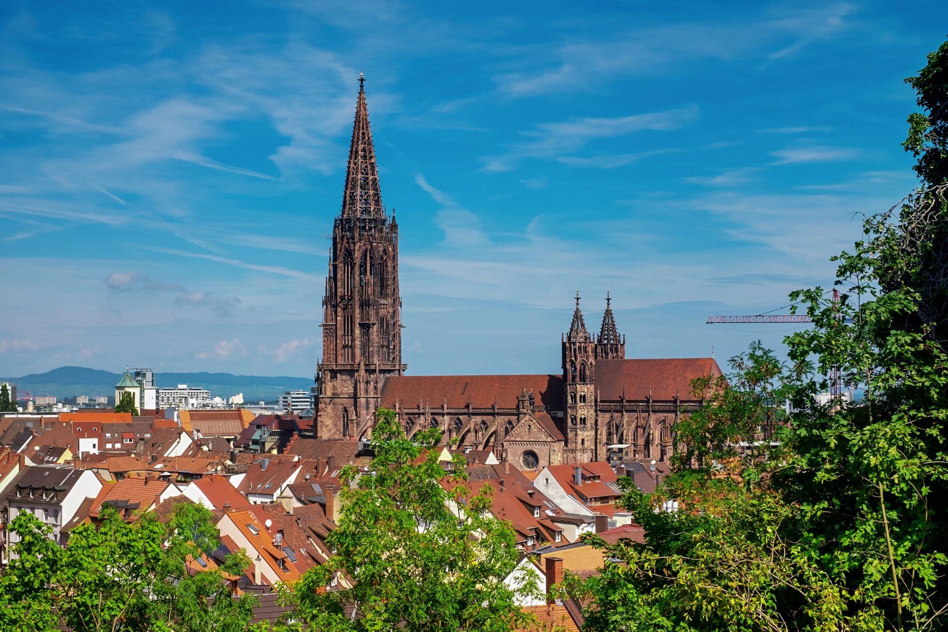 Anticimex Kammerjäger in Freiburg