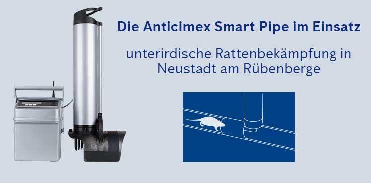 Anticimex Smart Pipe Neustadt