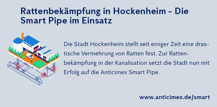 Rattenbekämpfung Hockenheim - Anticimex Smart Pipe