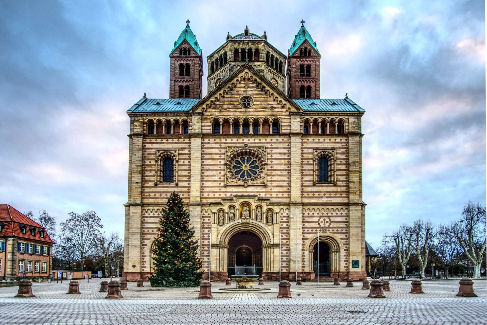 Anticimex Kammerjäger in Speyer