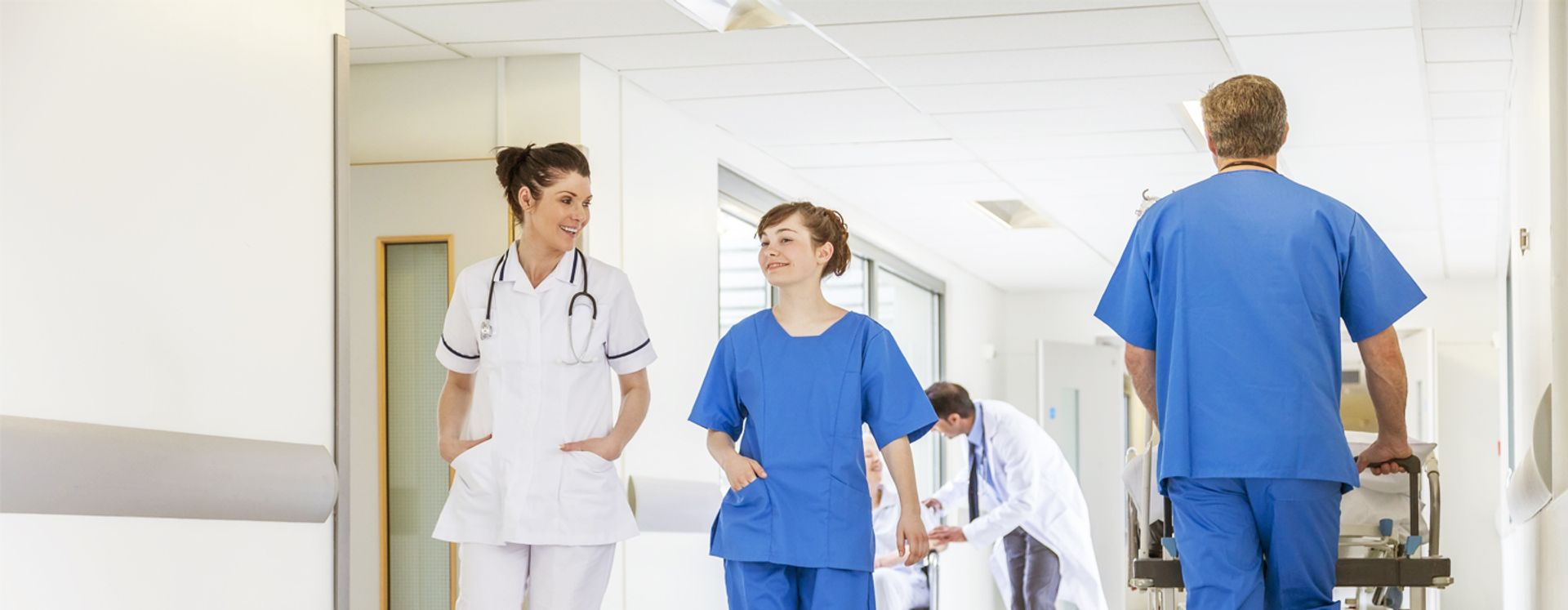 Ongedierte in ziekenhuizen voorkomen en bestrijden