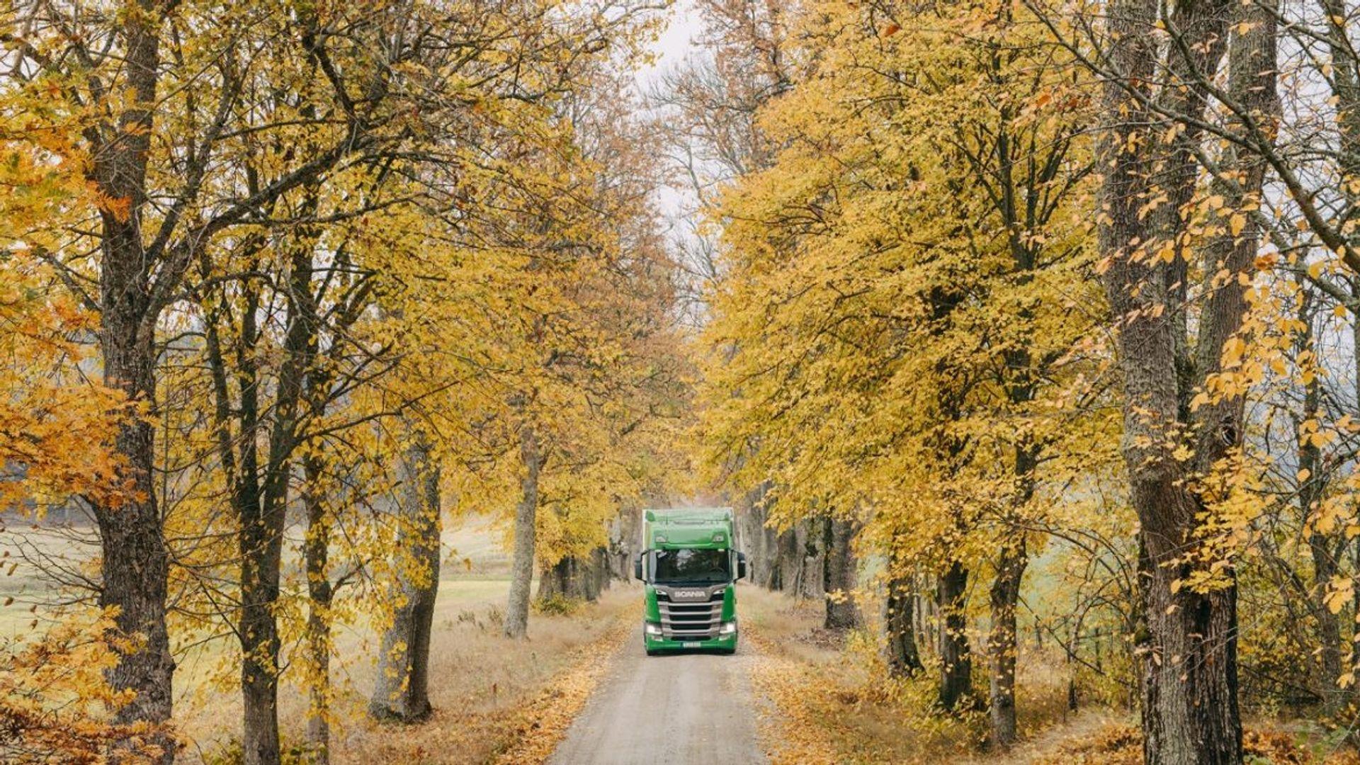 Ongedierte in vrachtwagens en bussen van Scania voorkomen
