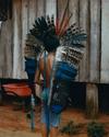 Amazonia, 03