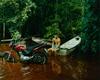 Amazonia, 02