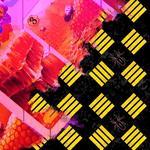 Karty z gry Miodek