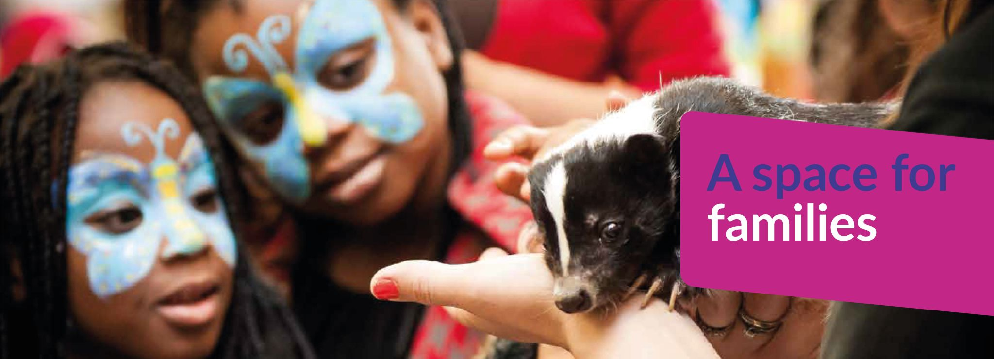 Text reads A space for families - image shows some children with facepaint on looking at a baby skunk