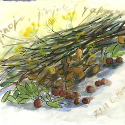 Hinojo, jínjoles y almendras