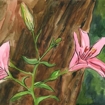 Liliums bajo el gran olmo