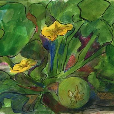Flores de calabaza