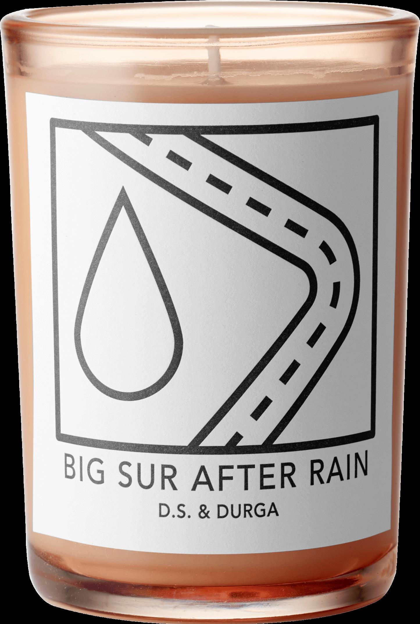 BIG SUR AFTER RAIN