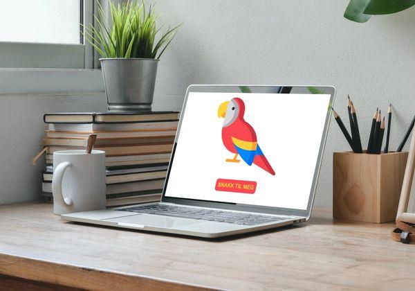 Bilde av en datamaskin som viser nettleser