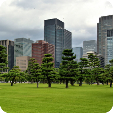 Tokyo offices overlooking the park