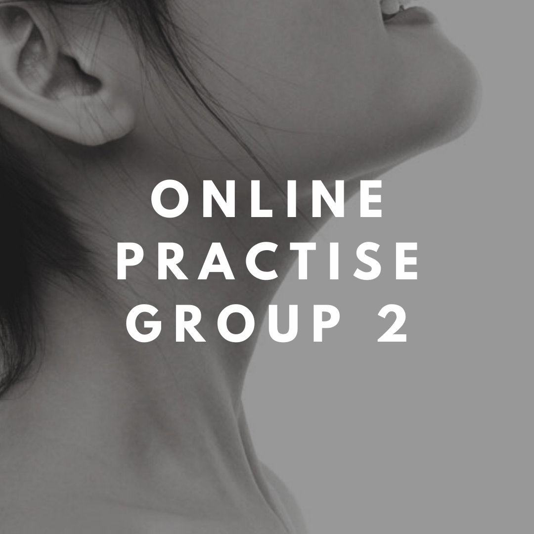 online practise group 2