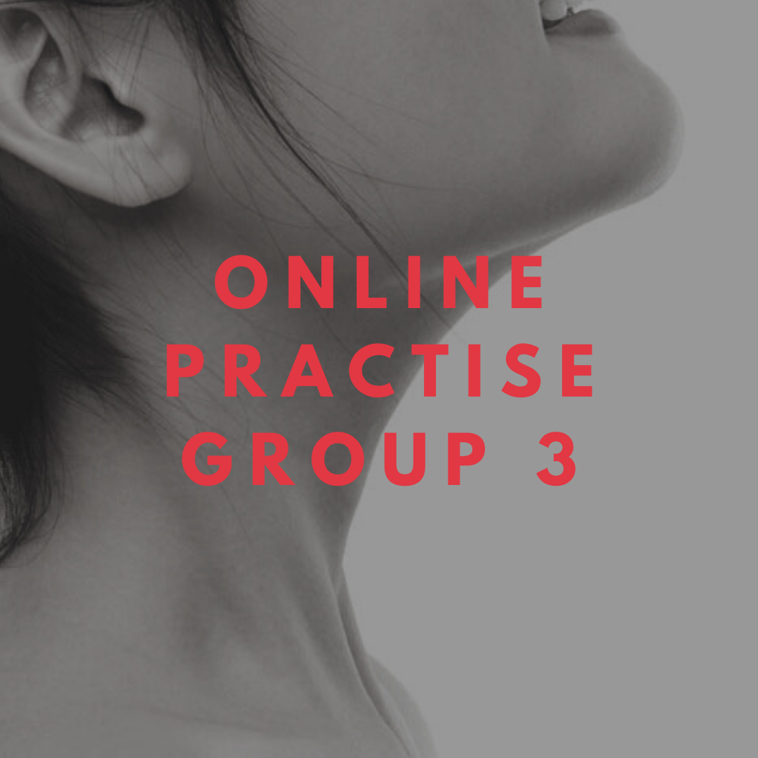 online practise group 3