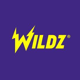 Wildz-logo