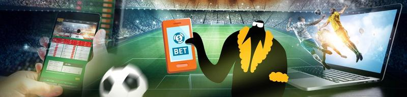 Casinos with Sports Betting-banner
