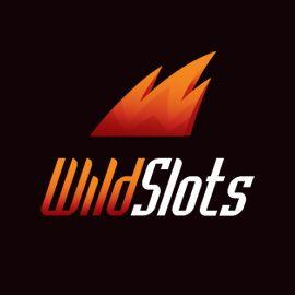 WildSlots-logo