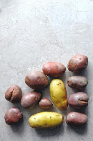 Ulike sorter potet på grå stenplate