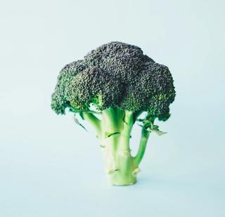 Grønn brokkoli på lys blå bakgrunn