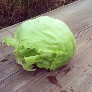 Et hode isbergsalat på trefjøl