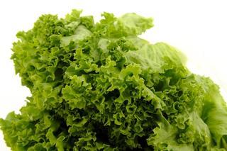 Grønn salat på hvit bakgrunn