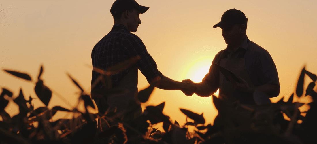 Rovensa adquire a Oro Agri