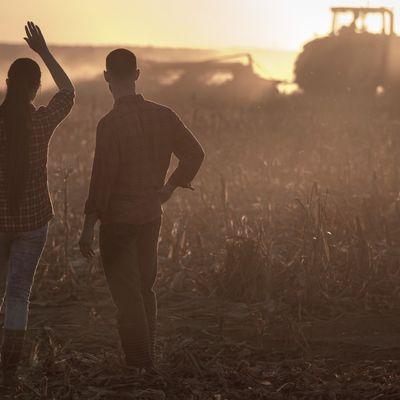 Somos especialistas na cultura do milho!