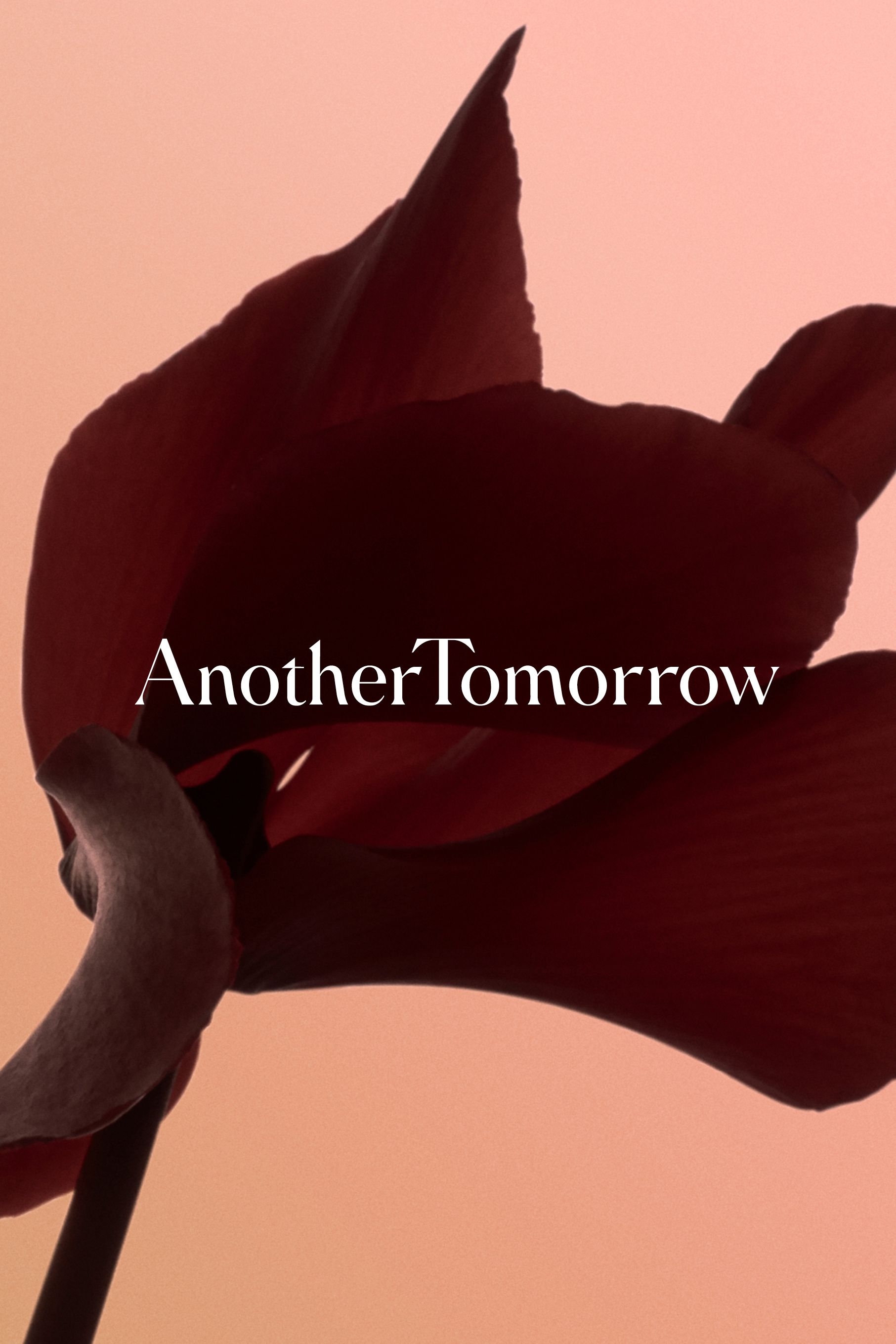 Another Tomorrow campaign image