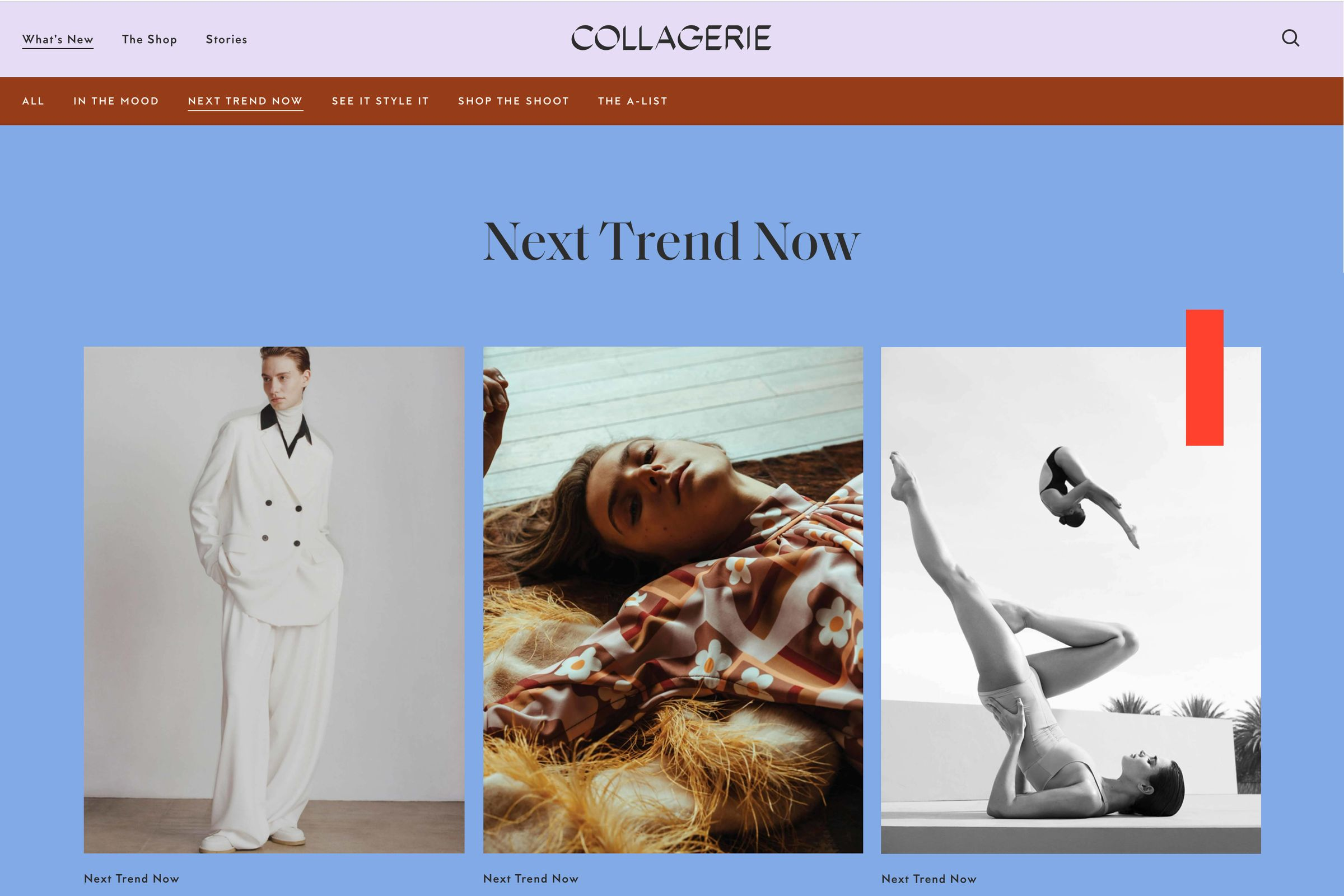 Collagerie website Next Trend Now
