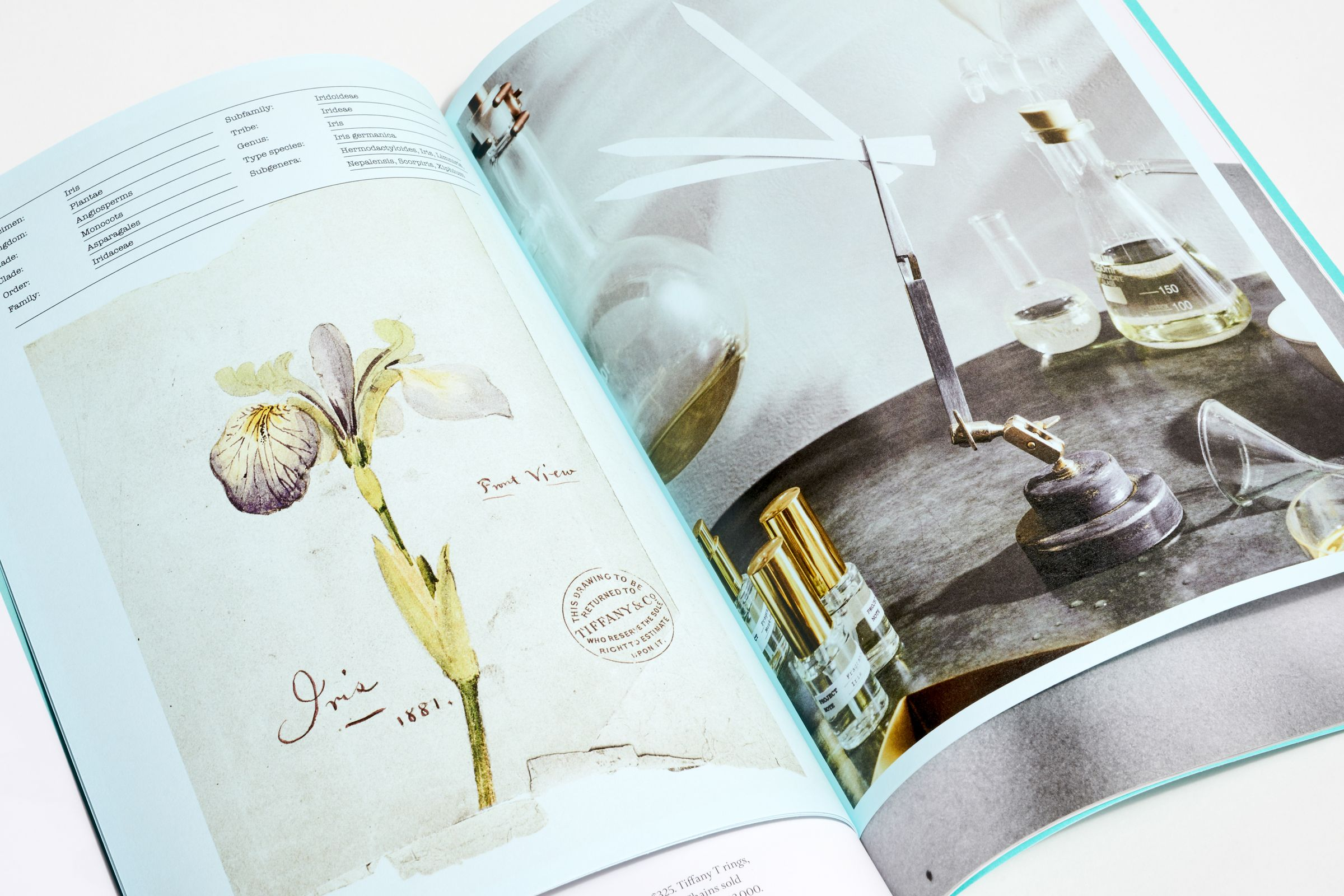 This is Tiffany magazine Issue 6 fragrance story insert layout