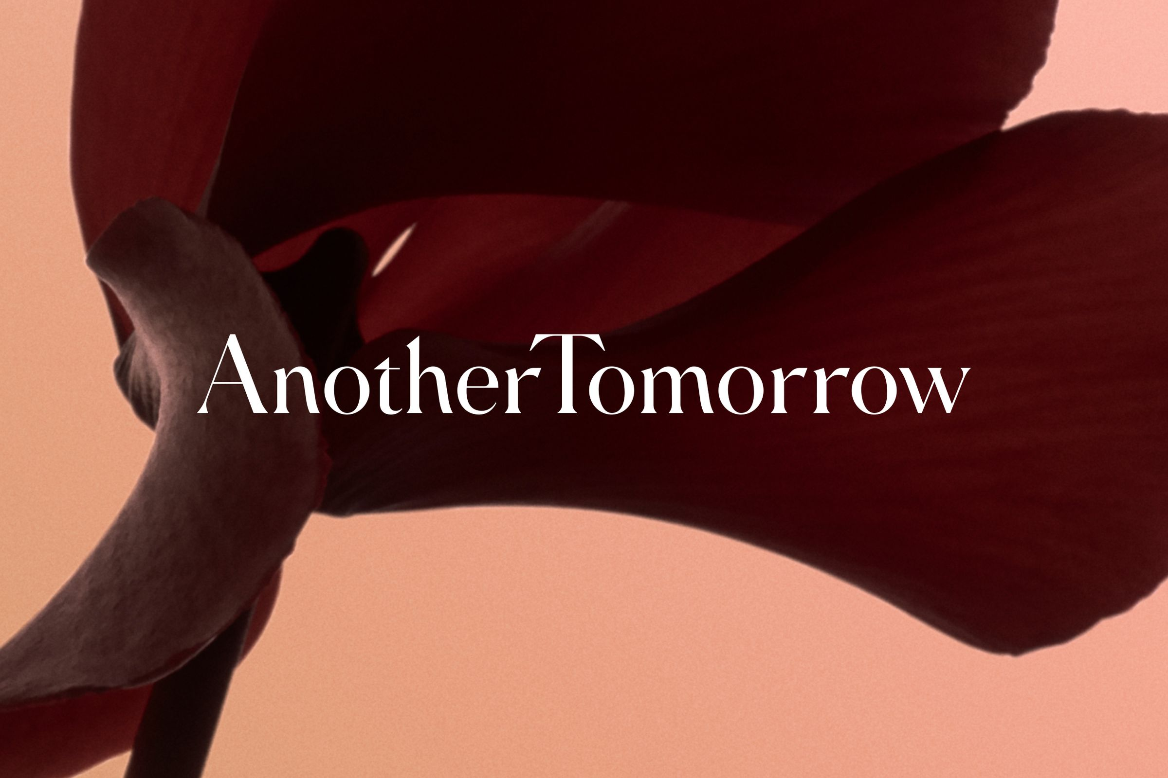Another Tomorrow logo