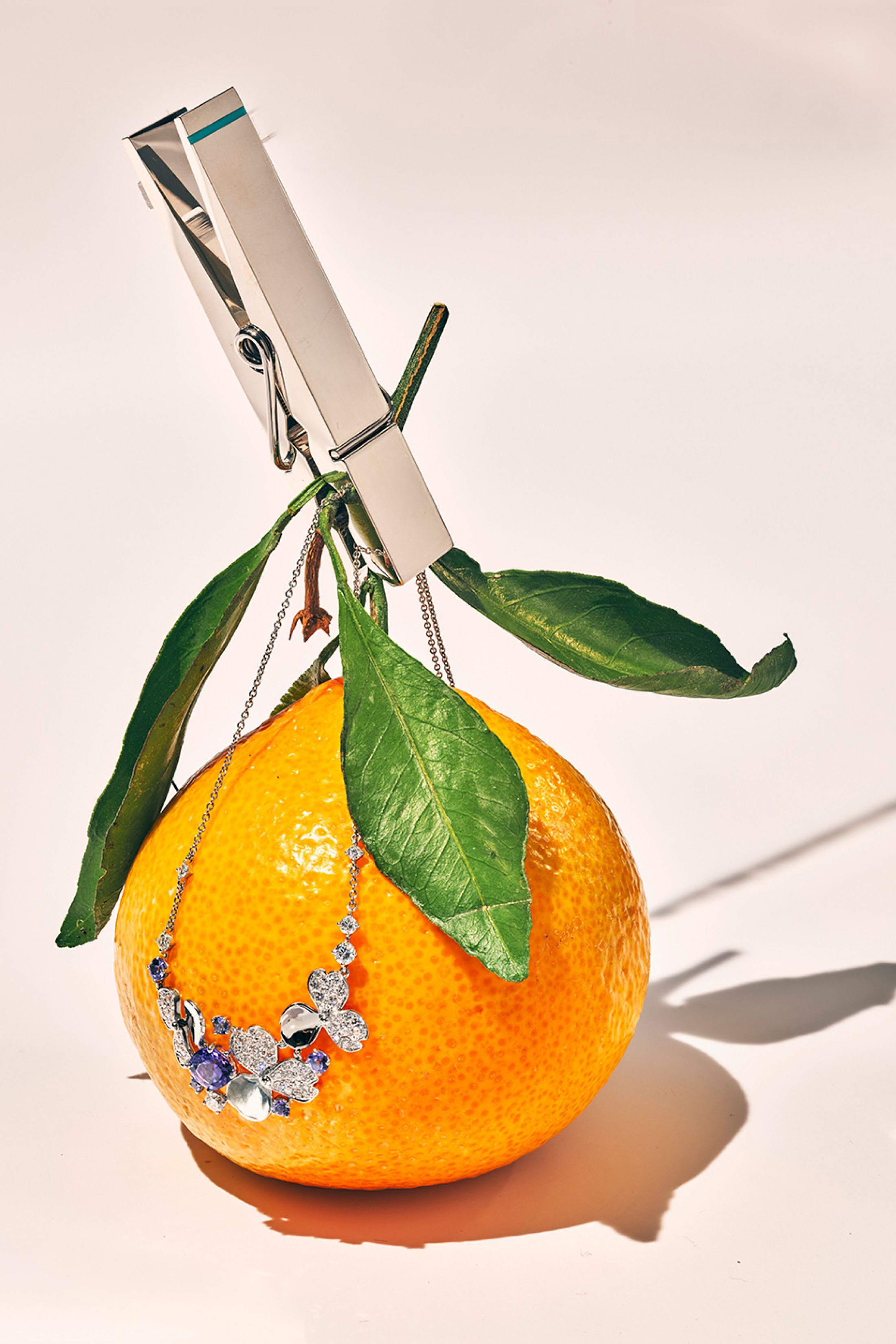 This is Tiffany issue 7 still life photography by Roe Ethridge