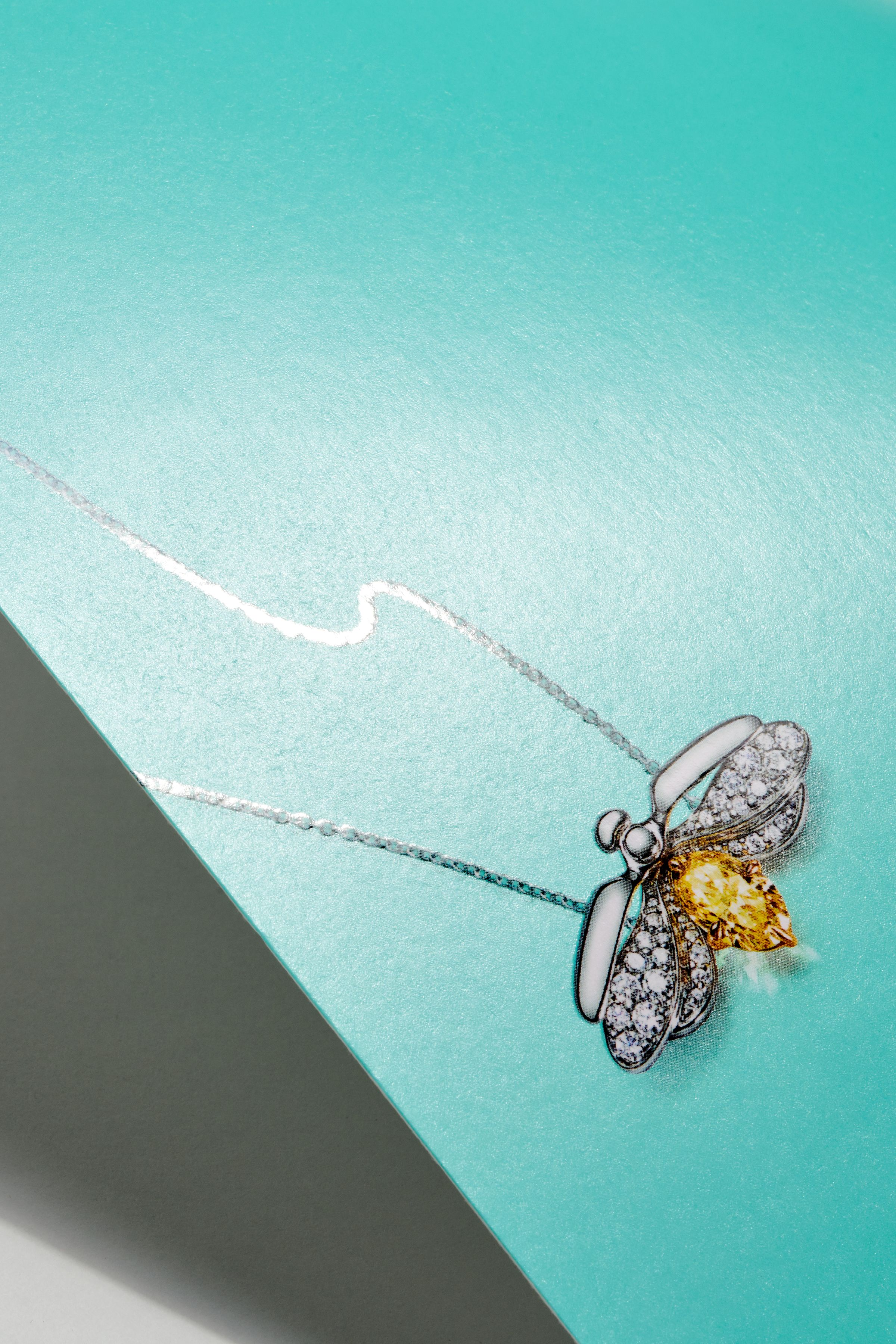 This is Tiffany bee necklace detail with spot gloss