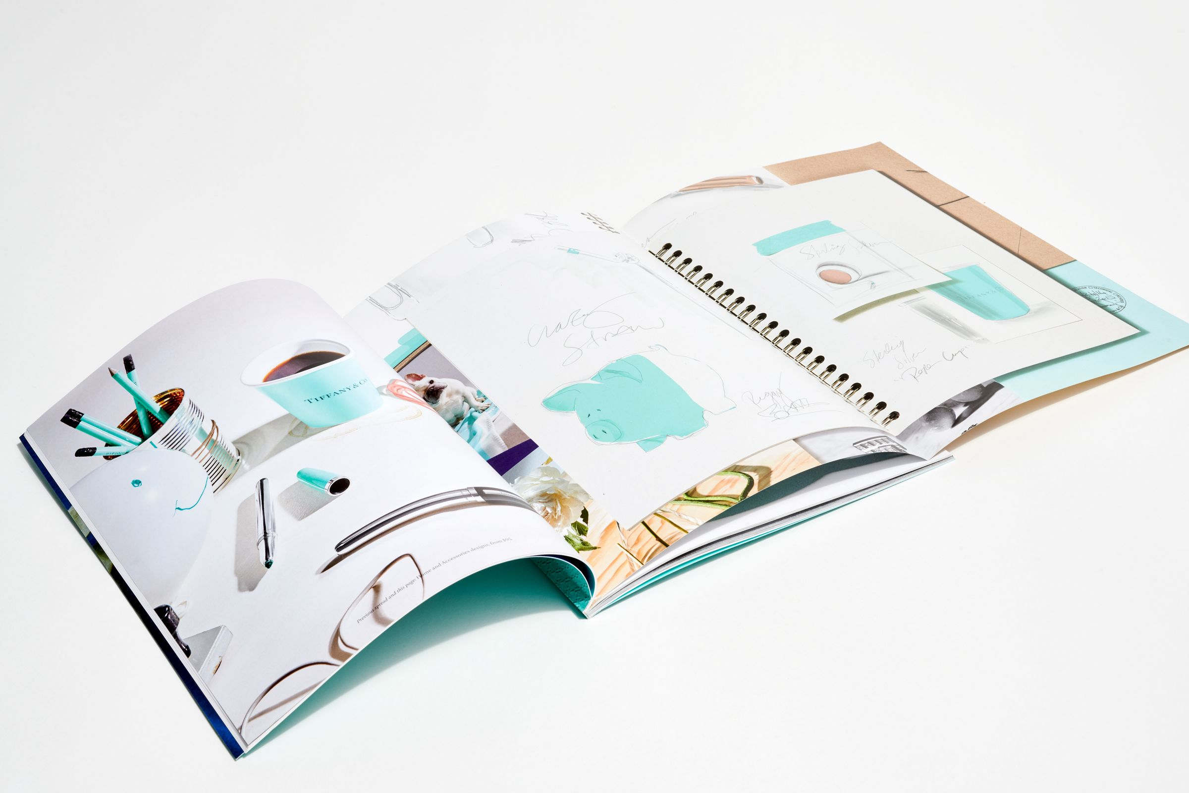 This is Tiffany magazine Issue 6 fold out spread layout
