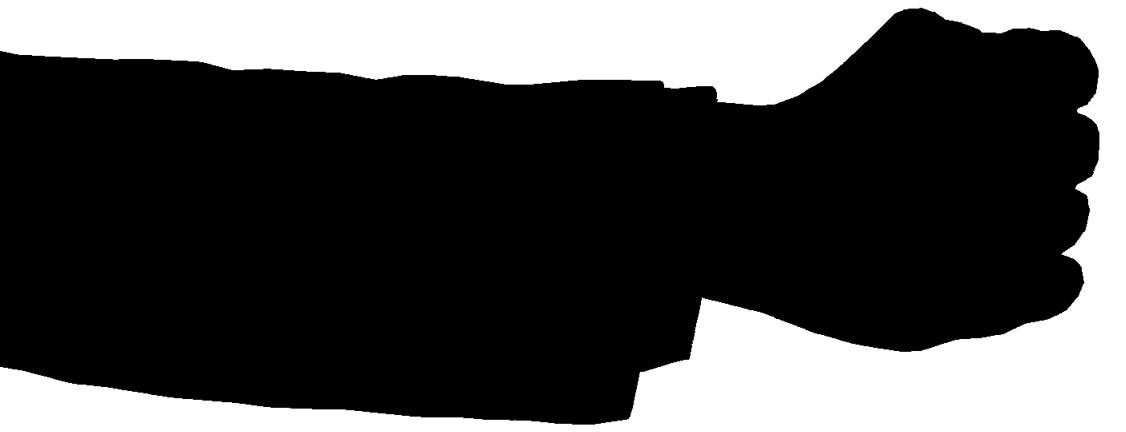 left-hand-image