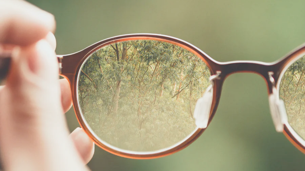 Eye glasses seeing forest clearly
