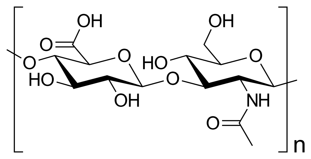 Structure of Hyluronic Acid