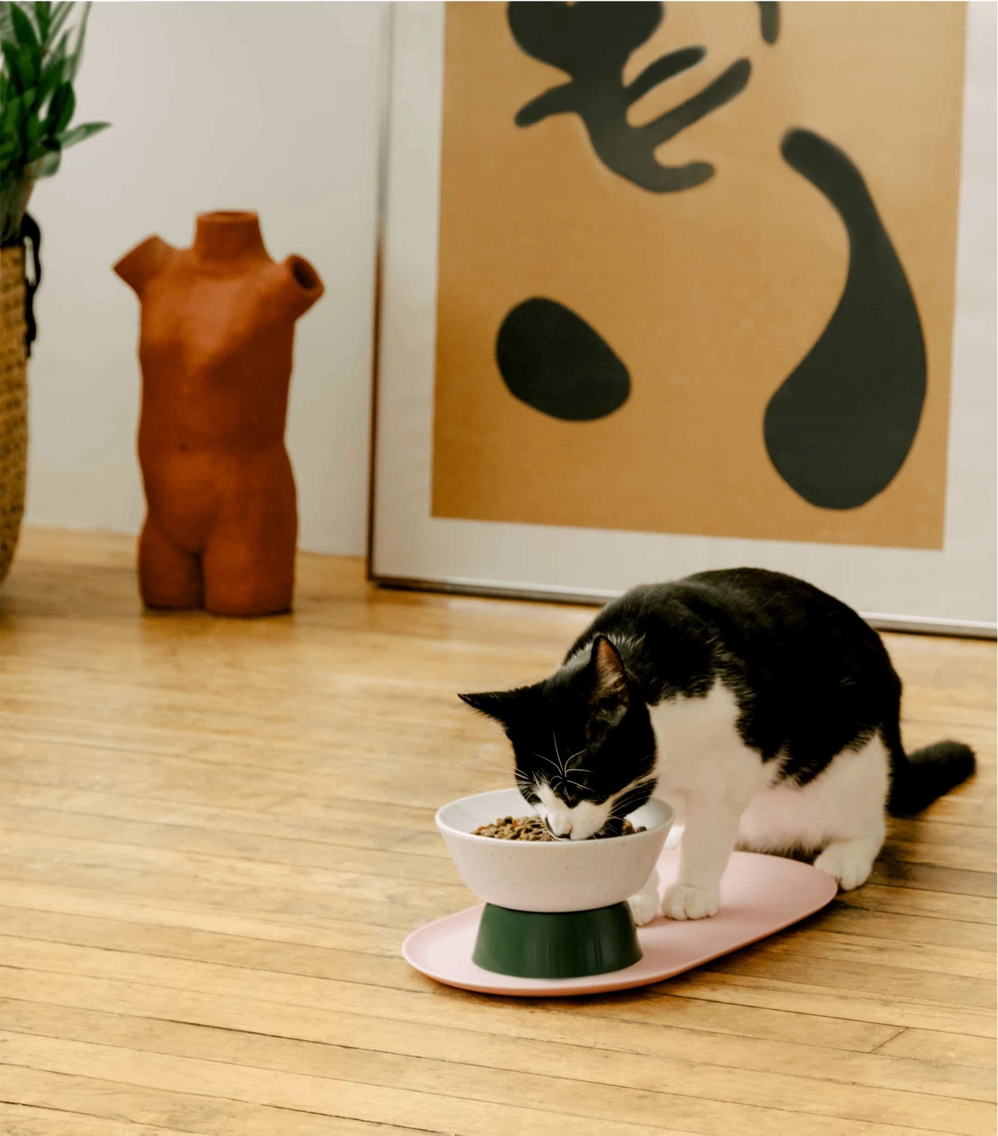 Cat eating Cat Person dry cat food out of a Cat Person Mesa Bowl