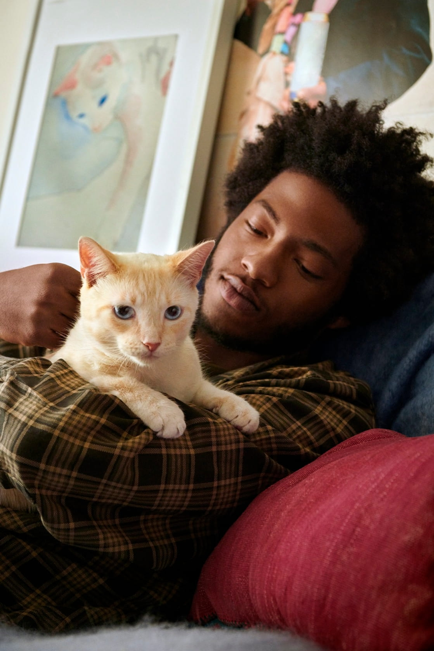 Man reclining on sofa while holding and stroking cat lying in his arms