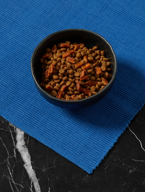 Bowl of Cat Person chicken & turkey dry food with chicken bites on blue placemat