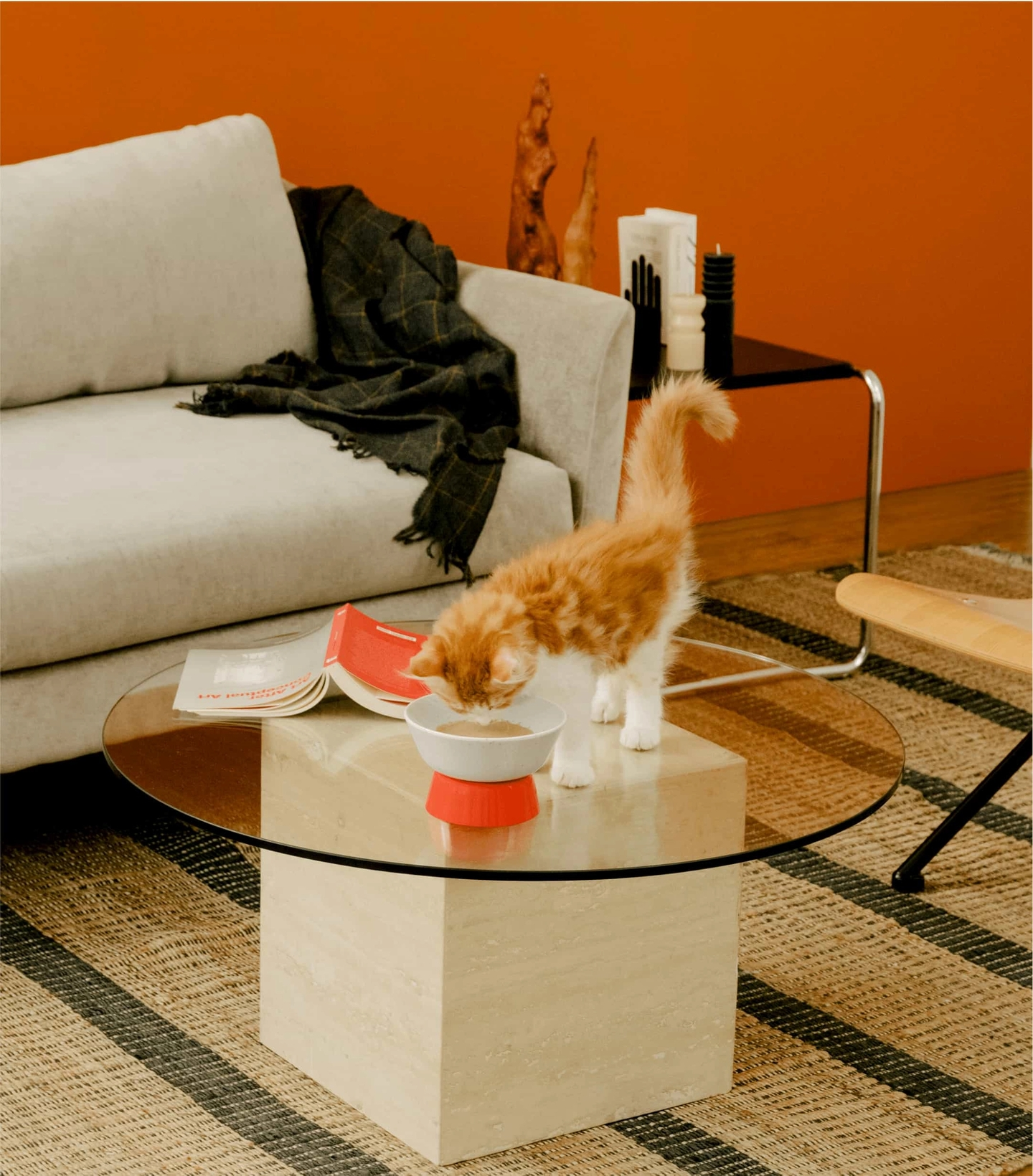 Maine coon kitten licking Cat Person Goodness Blends healthy cat treats out of a Cat Person Mesa Bowl on a glass coffee table