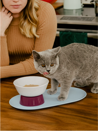 Maine coon kitten licking Cat Person Goodness Blends healthy cat treats out of a Cat Person Mesa Bowl on kitchen counter with woman looking from background