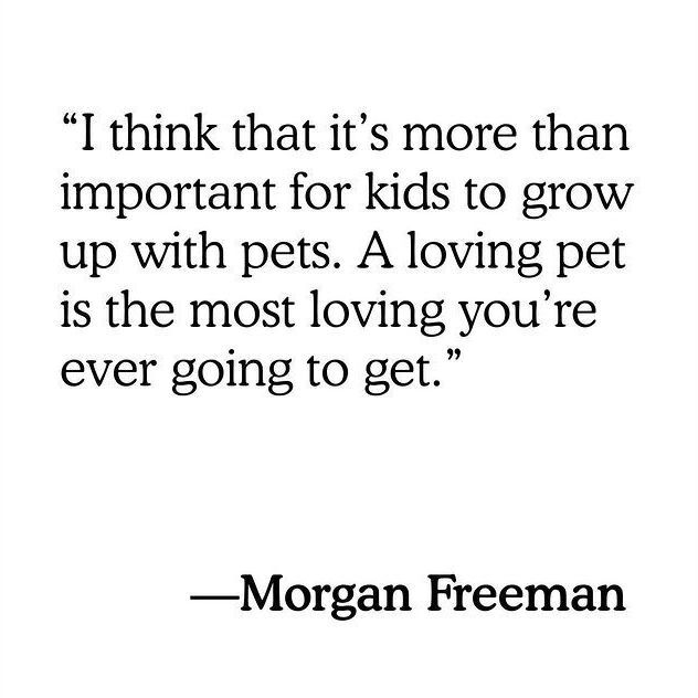 Morgan Freeman Quote: I think that it's more than important for kids to grow up with pets. A loving pet is the most loving you're ever going to get.