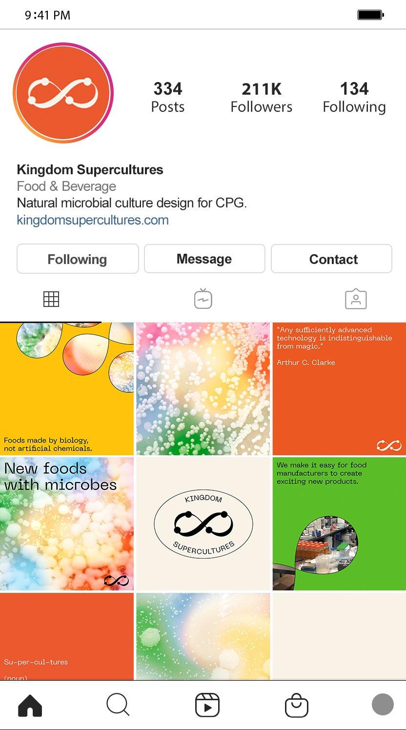Kingdom Supercultures Social Media Instagram Grid, designed by RoAndCo