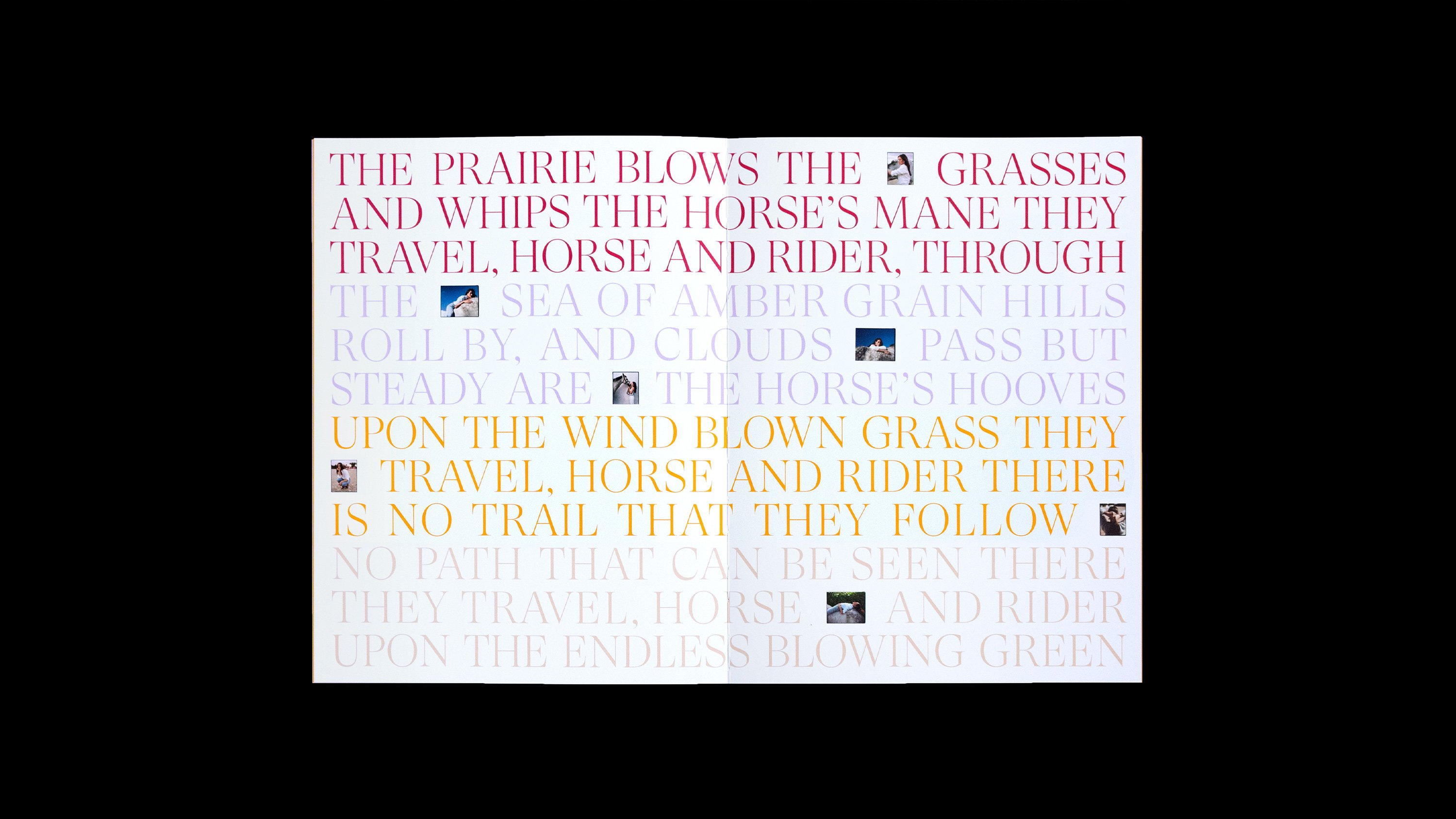 Irene Neuwirth brand book quote: The prairie blows the grasses and whips the horse's mane they travel, horse and rider, through the sea of amber grain hills roll by, and clouds pass but steady are the horse's hooves. Upton the wind blown grass they travel, horse and rider there is no trail that they follow. No path that can be seen there they travel, horse and rider upon the endless blowing green. Art direction and print design by RoAndCo