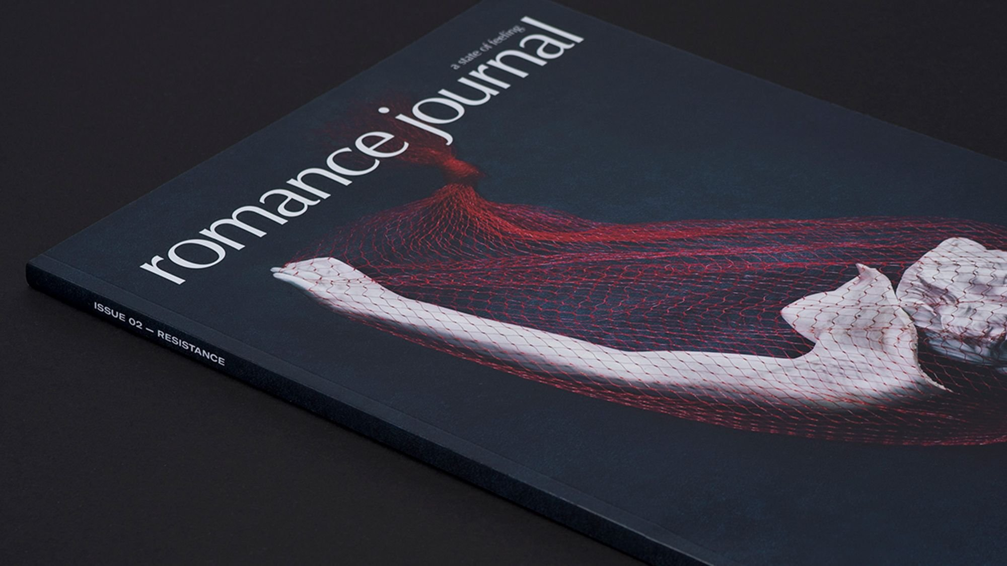 Close up of Romance Journal Issue 02 cover, sculpture wrapped in netting on black background. Publication design, art direction, print design by RoAndCo.
