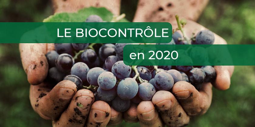 Le Biocontrôle poursuit sa croissance en 2020