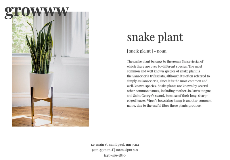 A screen shot of the Snake Plant 'Single Plant' page