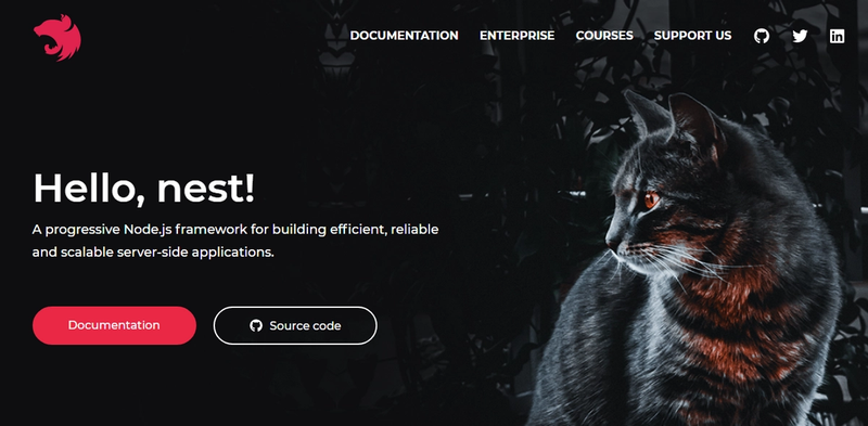 The front page of NestJS, featuring a cat.
